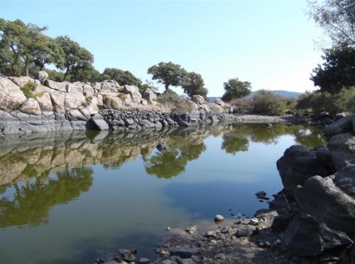 Turtle pool near Skalachori