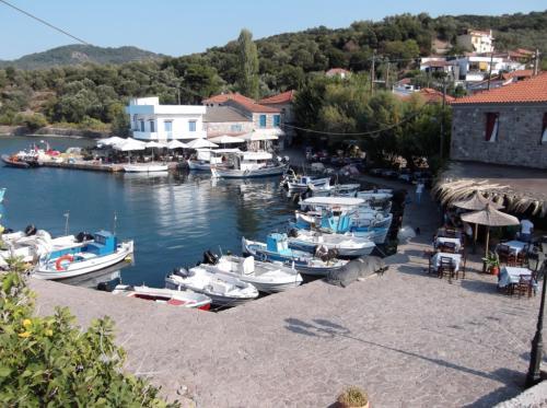Skala Sikamineas harbour
